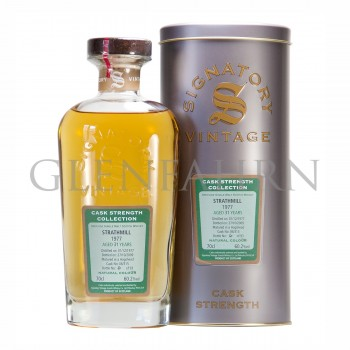 Strathmill 1977 31 Jahre Cask Strength Collection Signatory